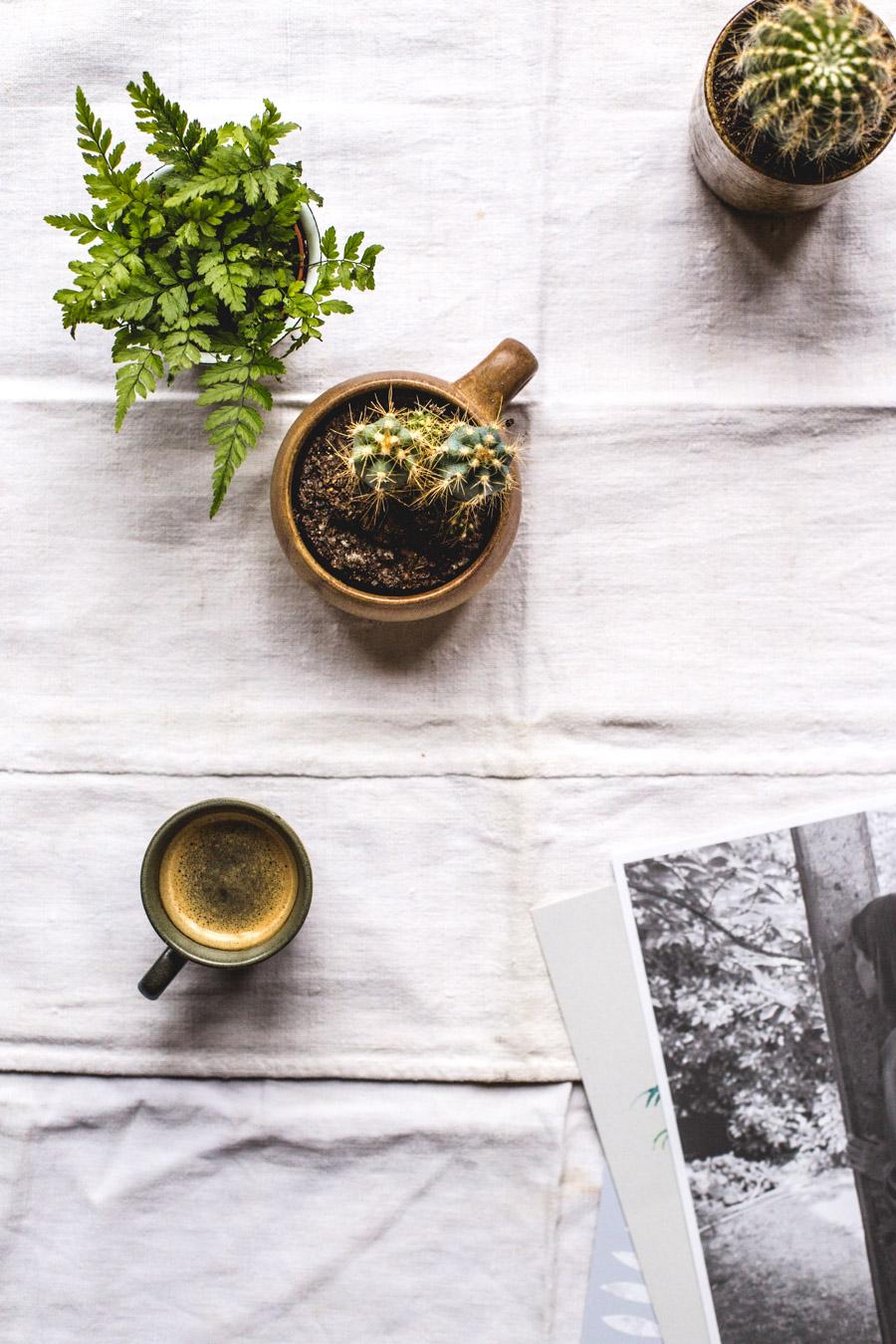 Still life - Ophelie Lauret - Ophelie's Kitchen Book-14