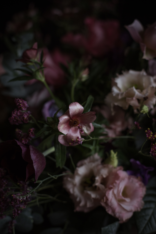 Fleurs - Romance 3.0 - Ophelie's Kitchen Book - Ophelie Lauret-14