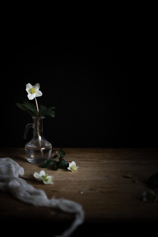 Hellebore - Ophelie's Kitchen Book - Ophelie Lauret-27