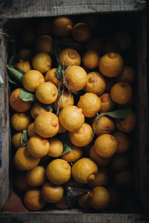 La Medina Marrakech - Ophelie's Kitchen Book - Ophelie Lauret-15