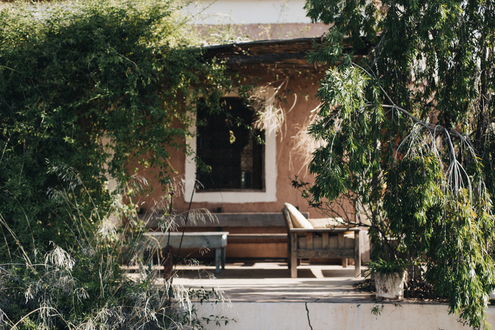 Le Domaine sauvage Bio Marrakech - Ophelie's Kitchen Book - Ophelie Lauret-51