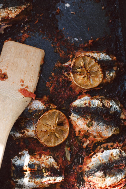 Le Domaine sauvage Bio Marrakech - Ophelie's Kitchen Book - Ophelie Lauret-53