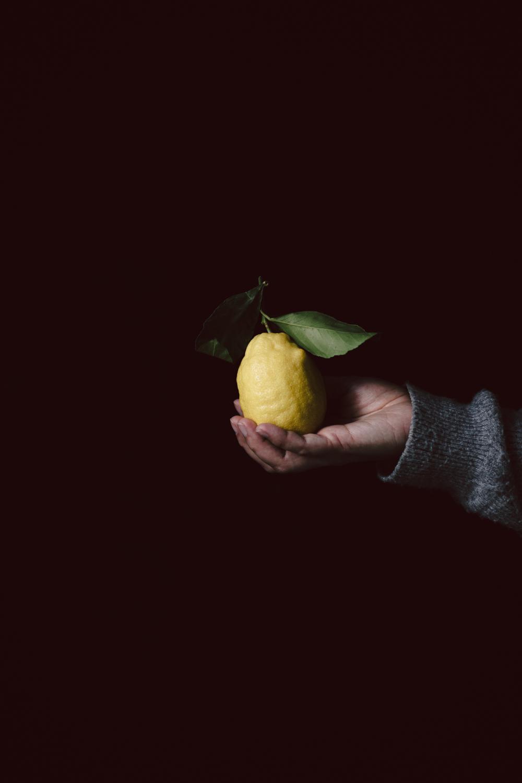 Cake au citron moelleux et acidulé - Ophelie's Kitchen Book-20